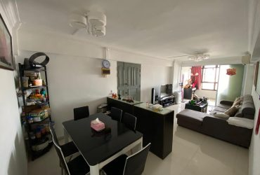 100 Whampoa Drive. High Floor. Renovated 4i HDB For Sale. Condo Layout.